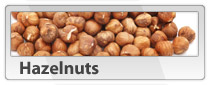 Various Nut Types